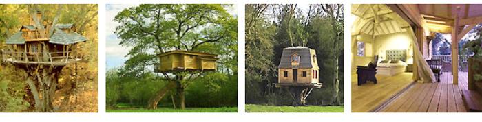 les cabanes perchées dans les arbres