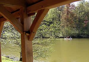 lacs-charpente.jpg
