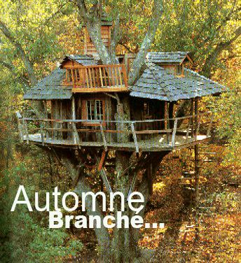treehouse_copie.jpg