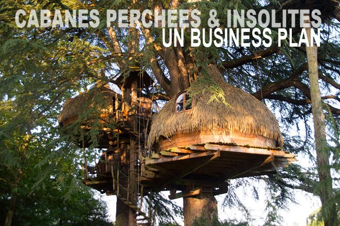 cabanes perchées en location marché et rapport financier
