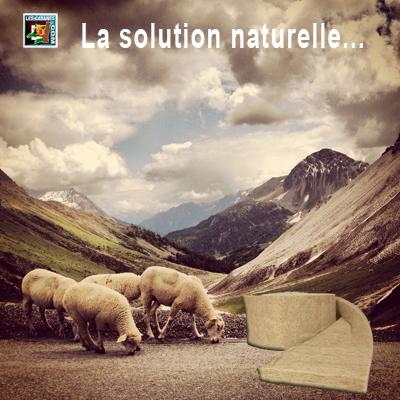 mouton-isolation-cabane.jpg
