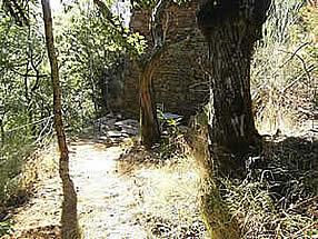 mur de ruine