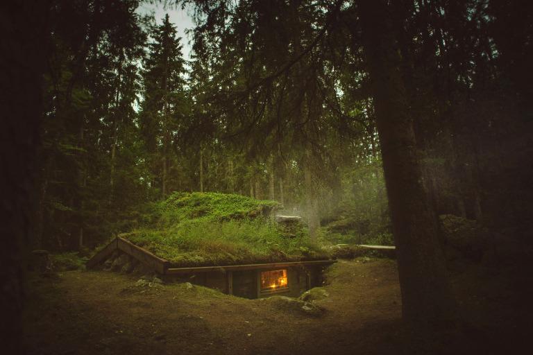cabane en Suede