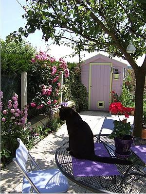 cabane_jardin_000.jpg