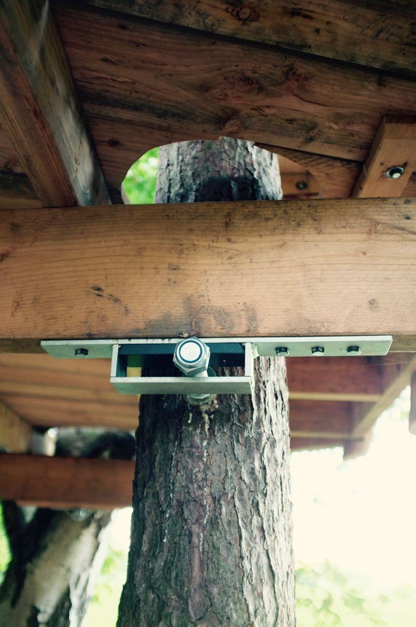 fixation de cabane dans les arbres