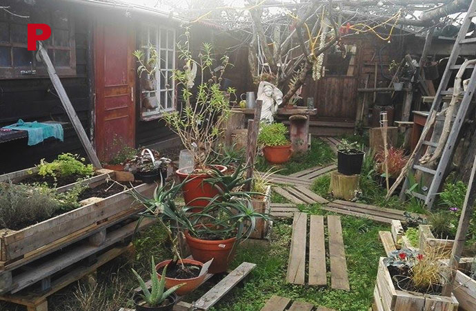cabane-jardins.jpg
