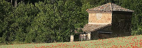 cabane-pierre-champs.jpg