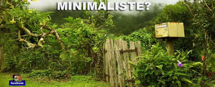 minimaliste_cabane.jpg
