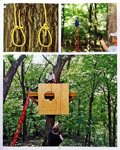 construction-cabane-arbres-plateforme.jpg