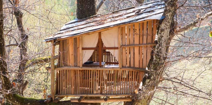 Cabane en bois dans une arbre