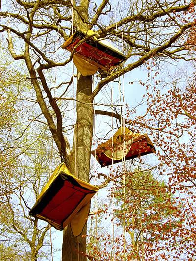 la tente dans les arbres, salon passion Robinson 2008