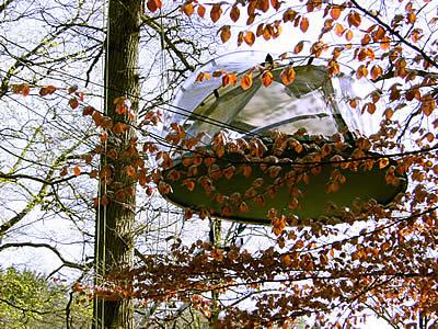 tente dans les arbres avec un toit transparent