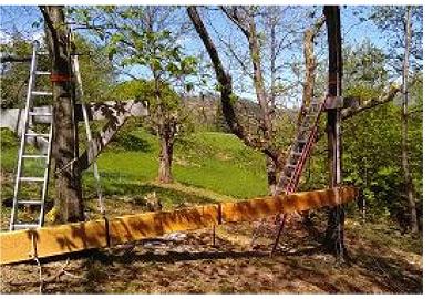 préparation cabane terrasse dans les arbres avec poutre au sol