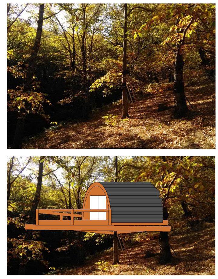 tutoriel construction cabane arbres avec perçage